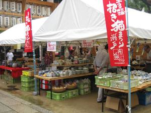 Toukionpare